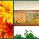 The Flower Farm Corporation