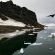 "Мероприятия | Obaldet Выставка ""Арктика"" в МАММ"